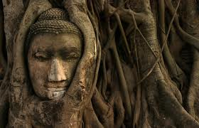 I BREATHE IN THE BUDDHA: Week 44 Day 1 of the 2014 MeditationChallenge