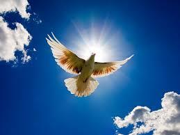 I AM SPIRIT EXPRESSING AS ME: Week 13 Day 1 of the 2015 MeditationChallenge